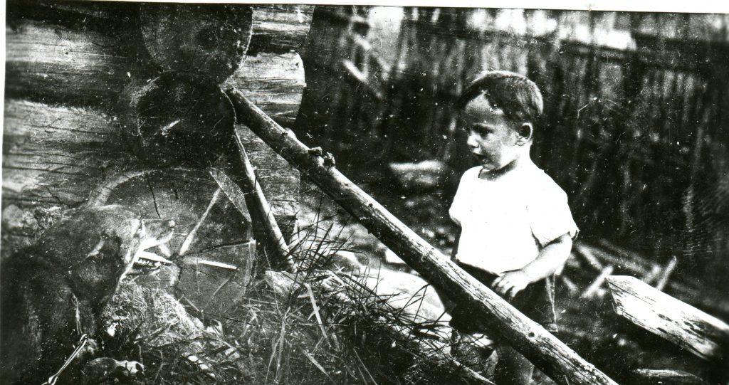 Полыковские хутора, 1937 год